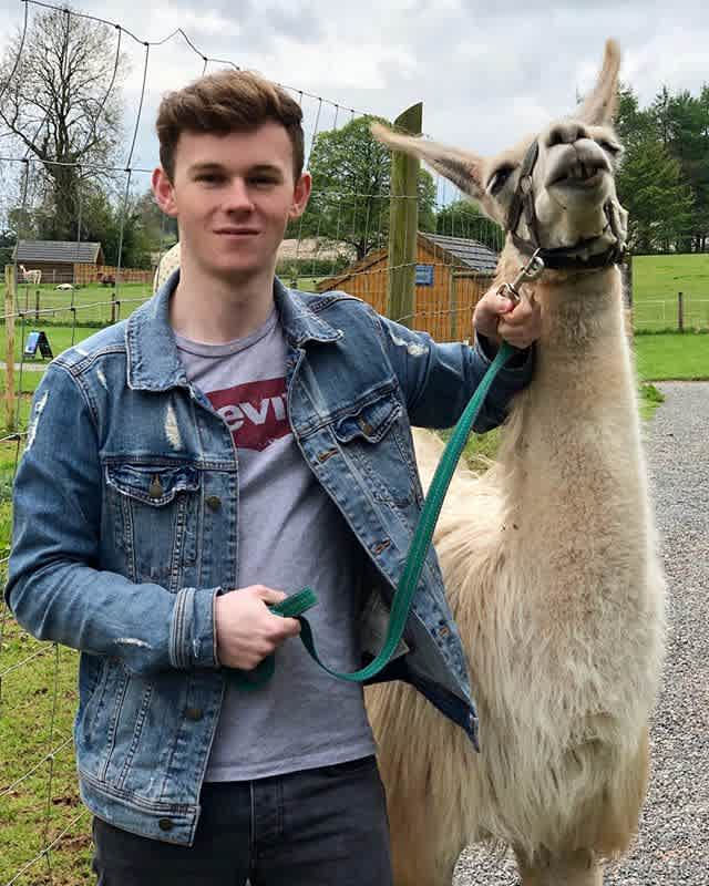 Llama Trekking The Jungle @eointennyson
