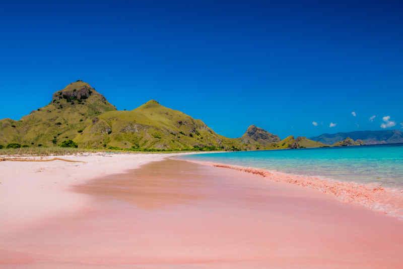 Pink Beach • Komodo, Indonesia