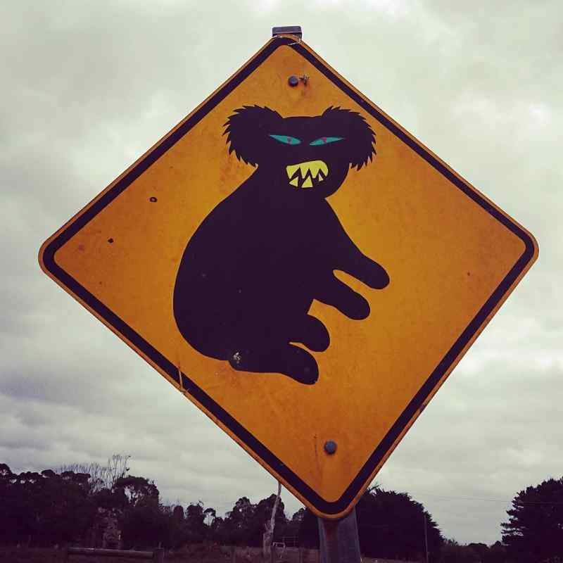 Drop Bear Road Sign