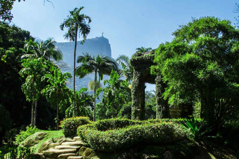 Jardim Botânico • Rio de Janeiro, Brazil
