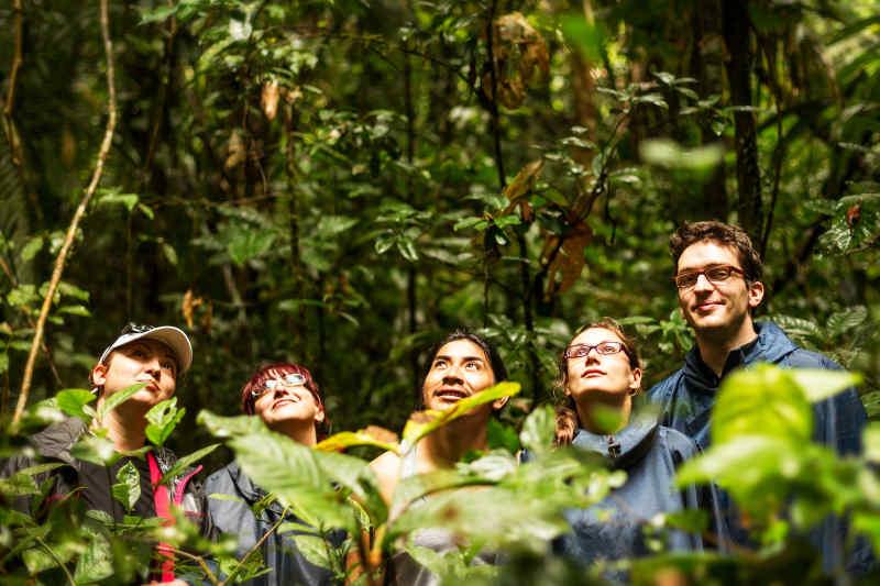 Travelers in the Amazon