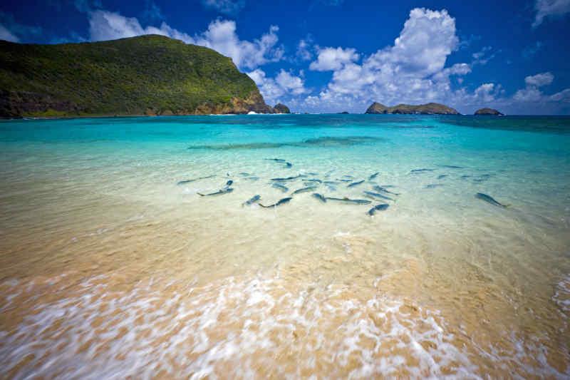 Lord Howe Island • Australia