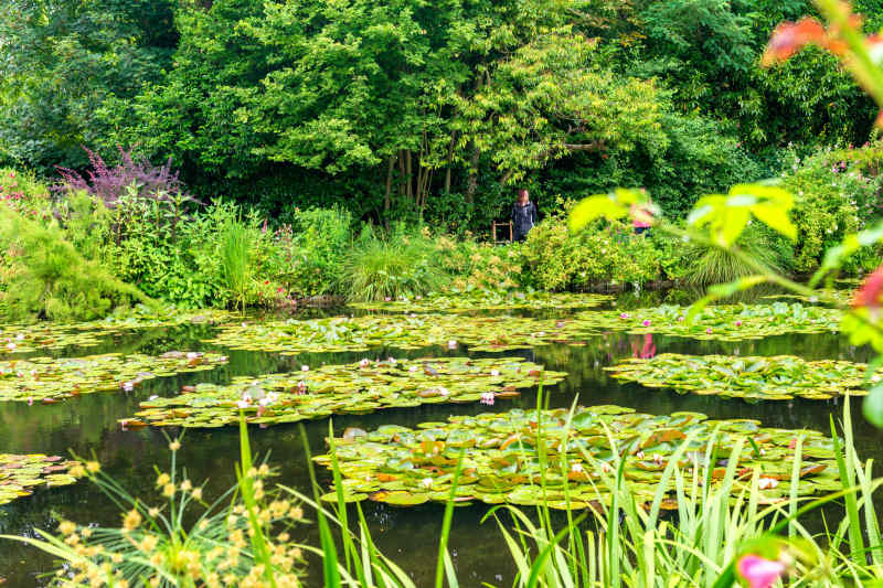 Claude Monet's Gardens • Giverny, France