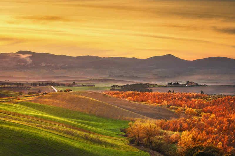 Tuscany • Italy