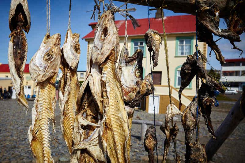 Icelandic Dried Fish