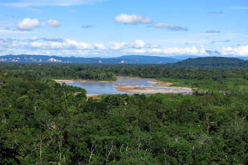 Madidi National Park