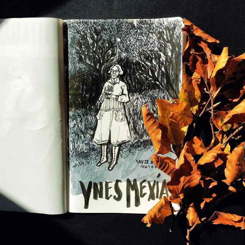 Ynes Mexia