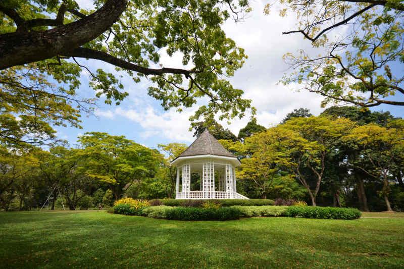 Singapore Botanic Gardens • Singapore