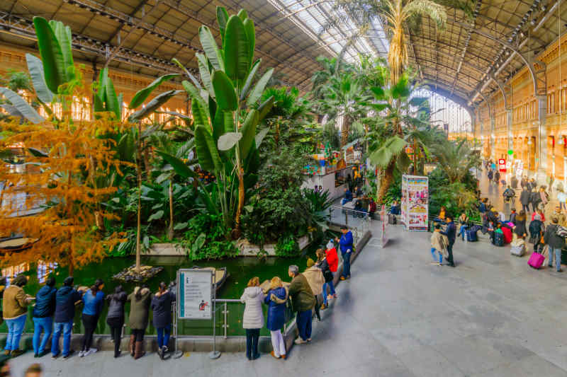 Atocha Botanical Garden • Madrid, Spain