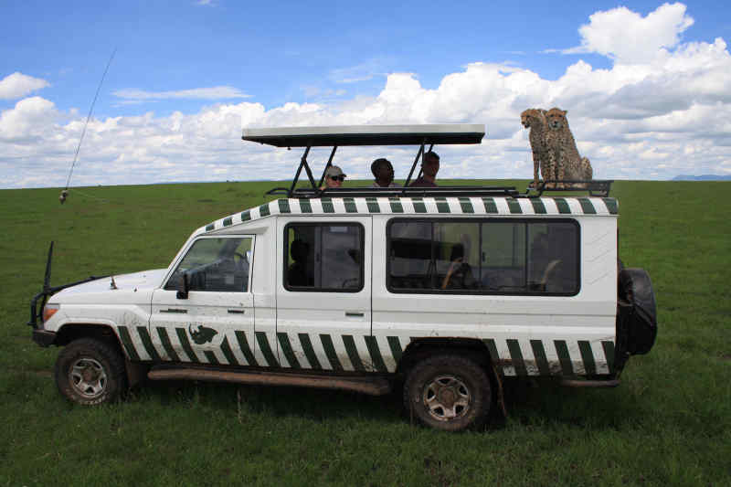 8 Things to Know Before Your First African Safari