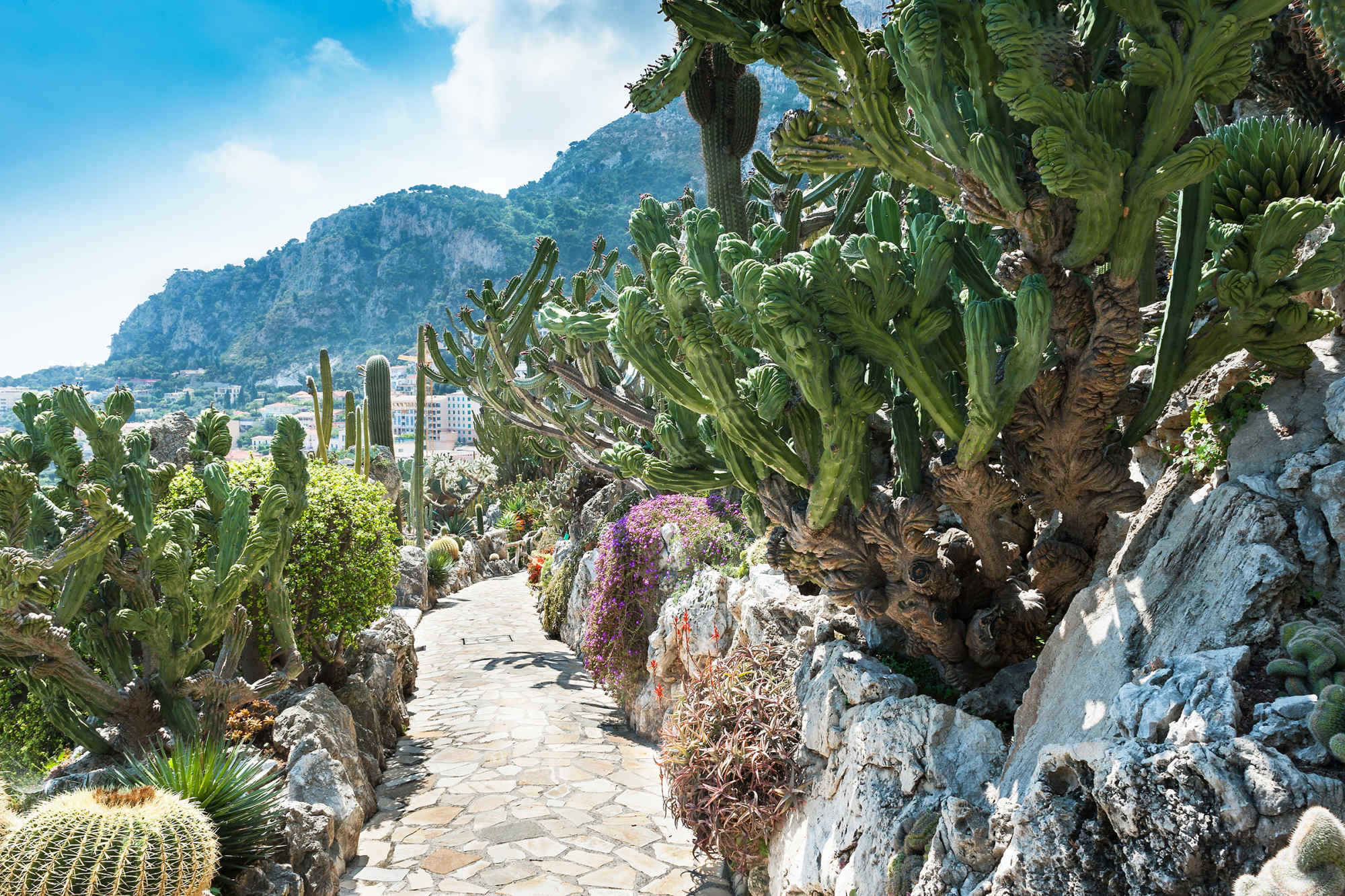 8 unusual gardens from around the world for Jardin exotique