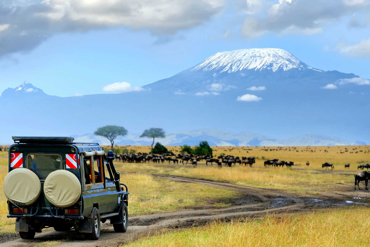 Vacation & Flight Deals to Kenya - 2020