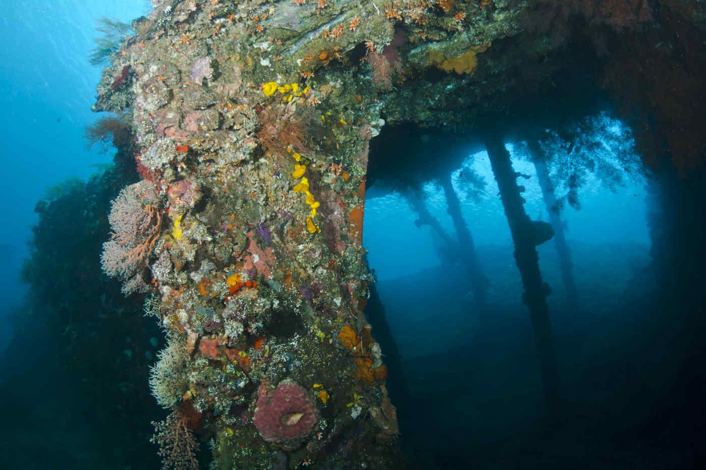 USS Liberty • Tulamben