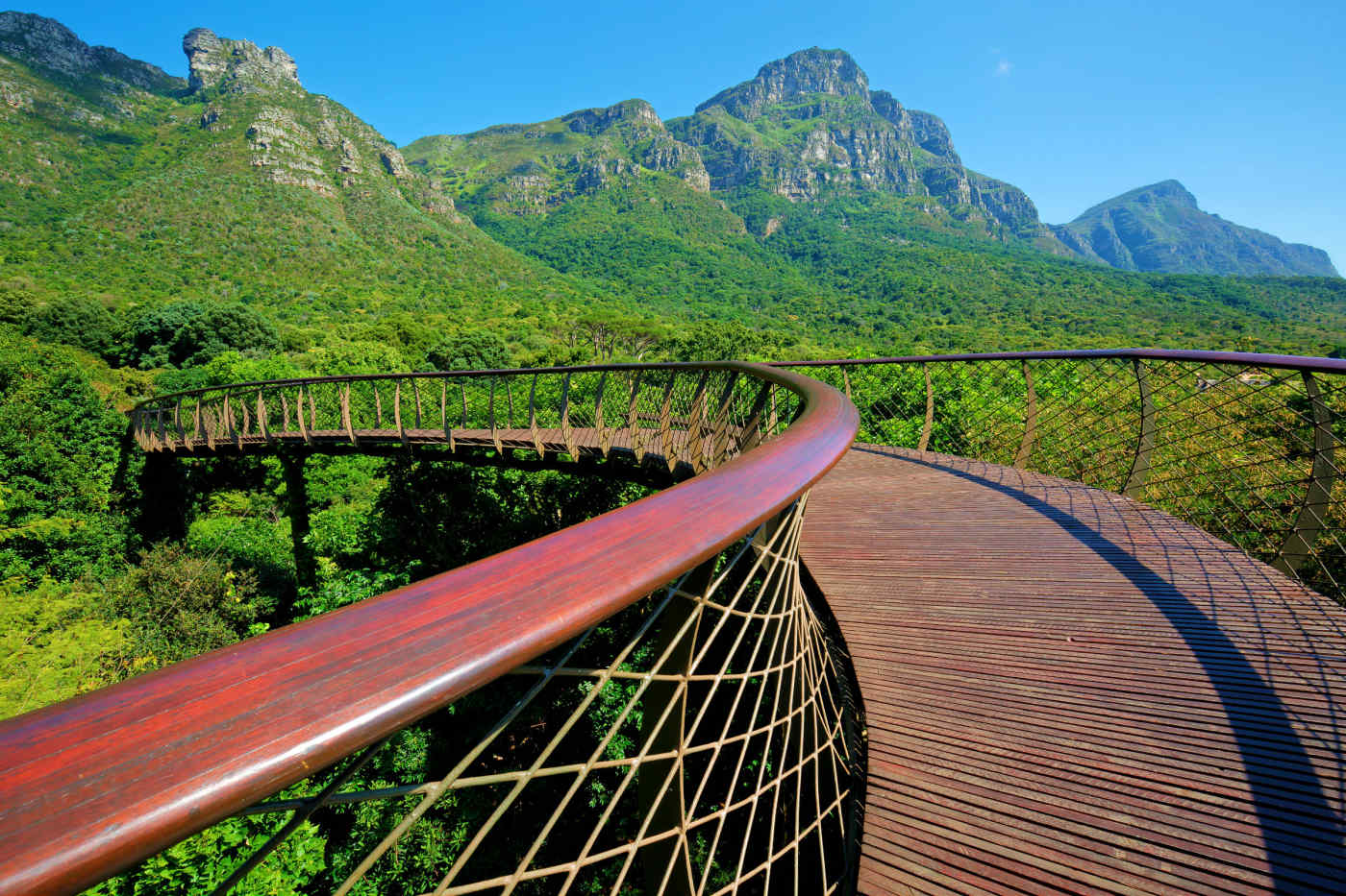 Kirstenbosch Botanical Garden in Cape Town, South Africa