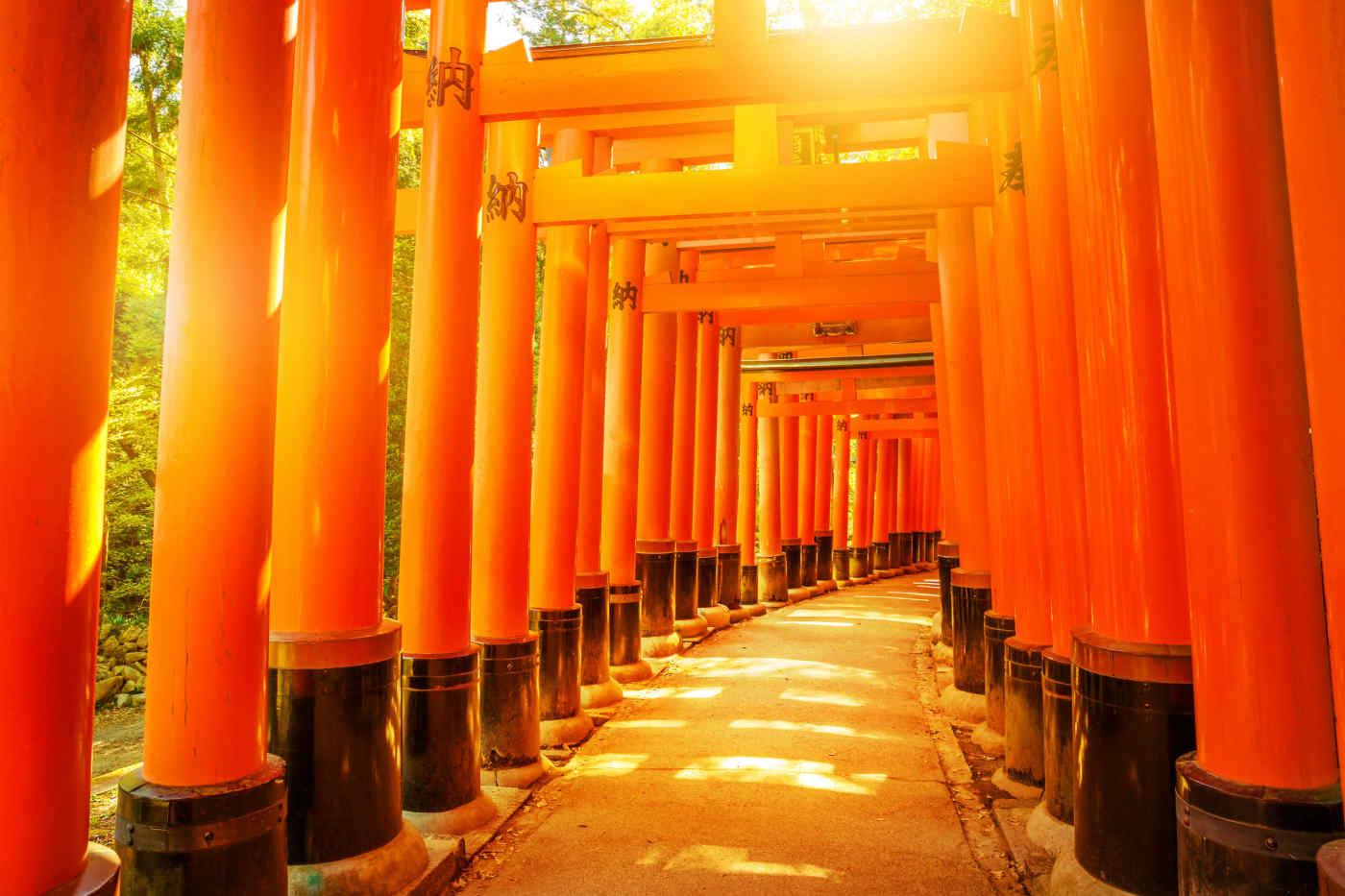 Fushimi Inari Taisha • Kyoto, Japan