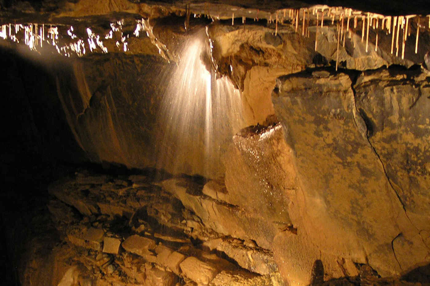Aillwee Cave, Clare