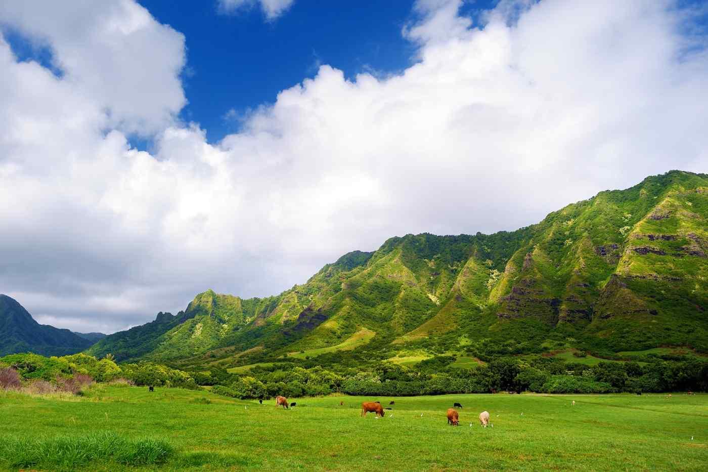 Kualoa Ranch, Hawaii