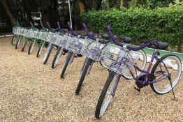Laru Beya • Rental bikes