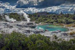 Whakarewarewa Geyser • Te Puia Geothermal Park