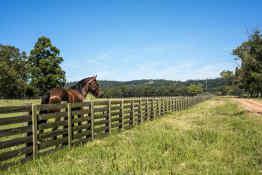Horseback riding in the Uruguayan countryside