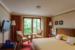Tre-Ysgawen Hall • Guest Room