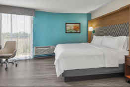 Holiday Inn Charleston-Riverview - Guest Room