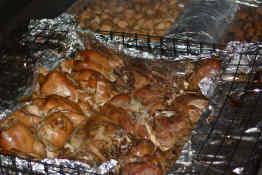 Traditional Hangi dinner