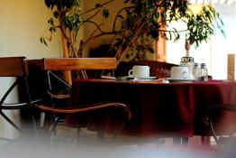 Hotel Patio del Malinche • Restaurant