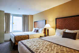 Skyline Hotel - Guest Room