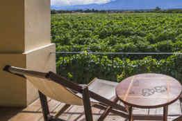 Wine Resort Vinas de Cafayate