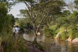 Elewana Serengeti Migration Camp