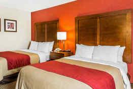 Comfort Inn Boston - Guest Room