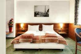 Alpin Park Hotel • Guestroom