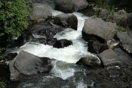 Rapids at Peguche Waterfall