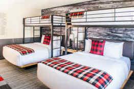 Mountain Modern Motel - Guest Room