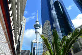 Sky Tower • Auckland, New Zealand