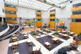 Rydges Rotorua • Lobby