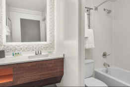 Holiday Inn Charleston-Riverview - Bathroom