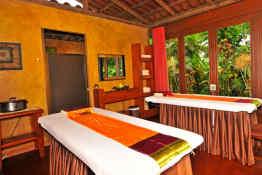 Hotel Arenal Manoa & Hot Springs