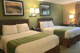 Acadia Inn - Guest Room