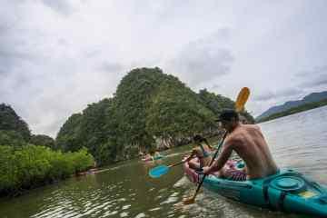 Mangrove Ocean, Krabi