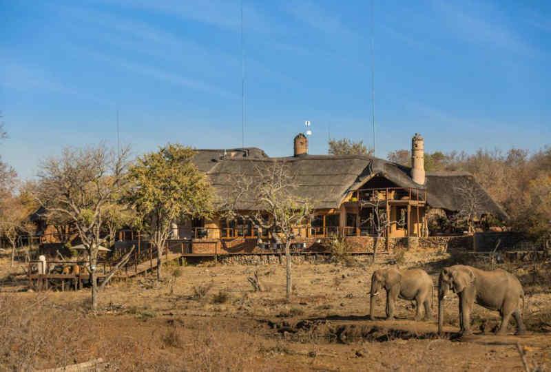 Madikwe Royal Safari Lodge