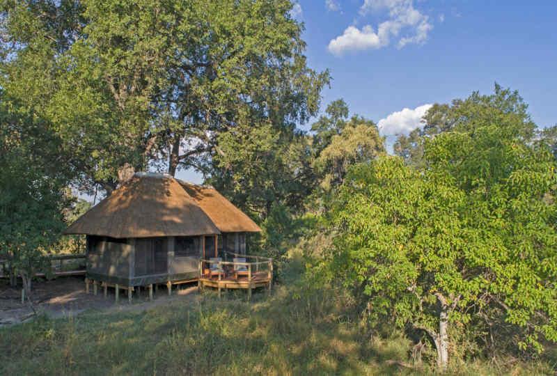 Desert & Delta Safaris: Camp Moremi Game Reserve