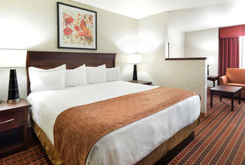 Crystal Inn Hotel & Suites (Salt Lake City) - Guest Room