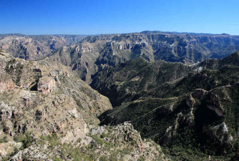 Copper Canyon in Mexico