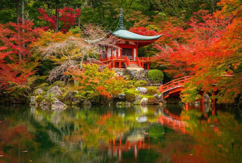 Japanese Garden • Kyoto