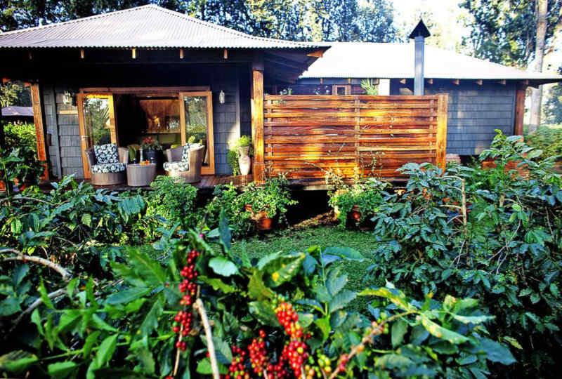 Elewana Arusha Coffee Lodge