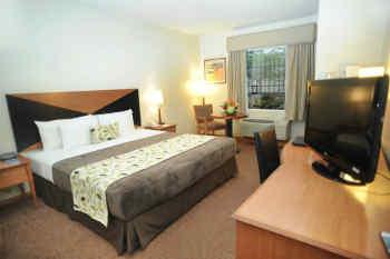 The Sleep Inn Hotel Downtown San Jose