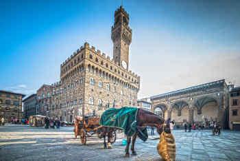 Piazza della Signoria • Florence