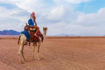 Sinai • Egypt